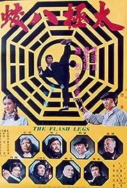 Shaolin Deadly Kicks Poster