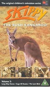 Watch free movie website Cage of Koalas by [4K]