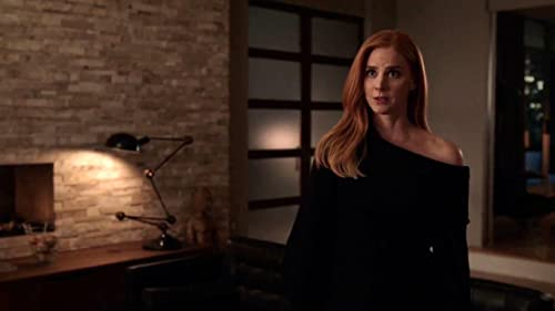 Suits: Donna Steals Paintings, Harvey's Heart