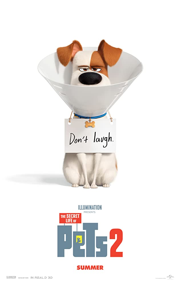 The Secret Life of Pets 2 (2019) Dual Audio Hindi 300MB HDTCRip Download
