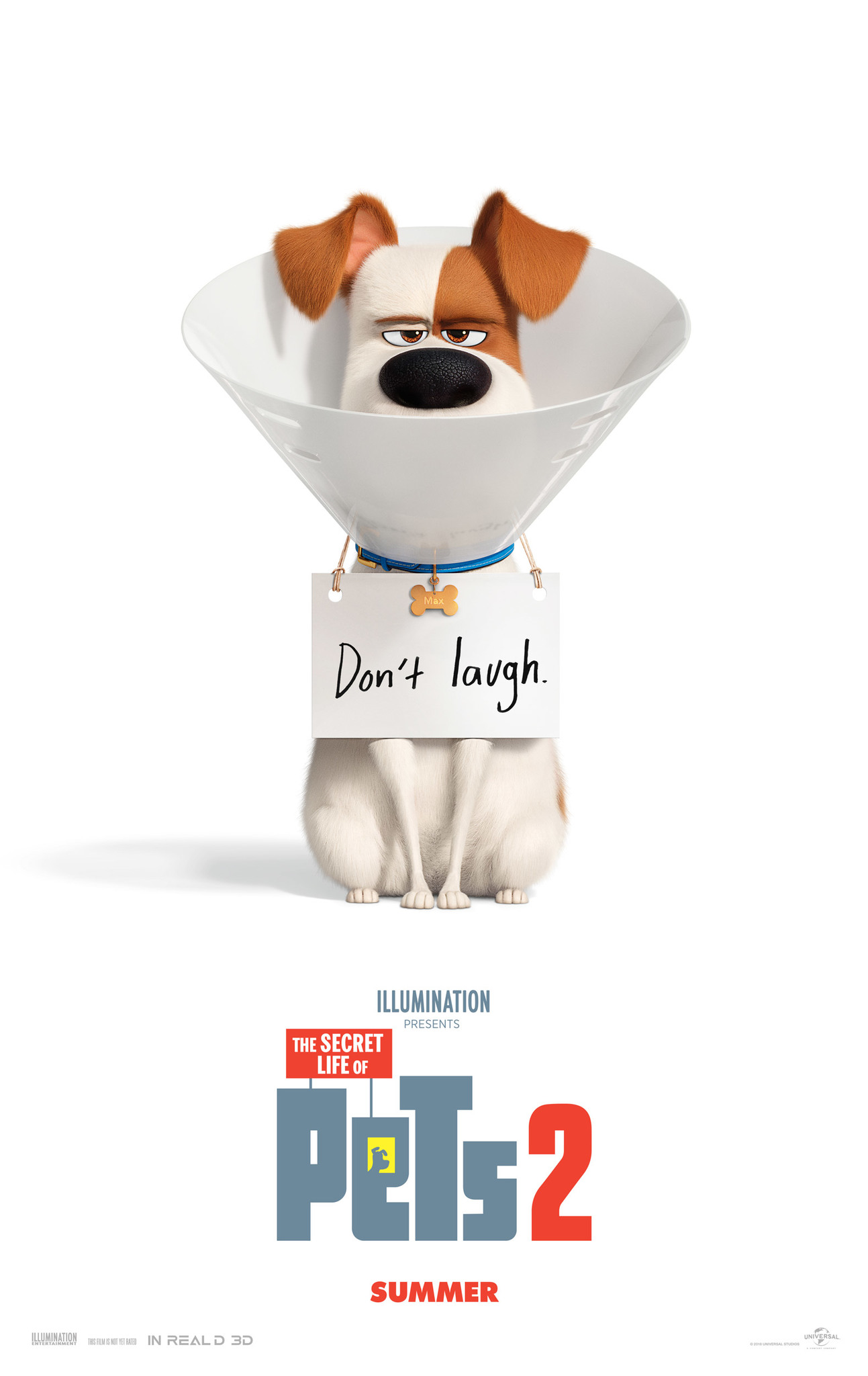 The Secret Life of Pets 2 (2019) WEBRip 720p & 1080p