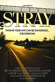 Stray Poster