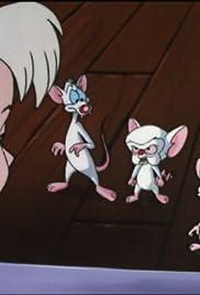 Pinky And The Brain Brinky Tv Episode 1997 Imdb