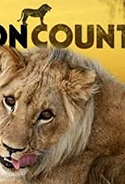 Lion Country Poster