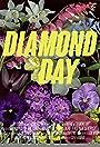 Diamond Day