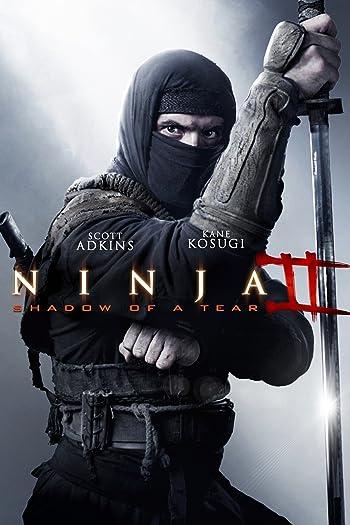 Ninja: Shadow of a Tear 2013 BluRay 480p Dual Audio In Hindi 300Mb