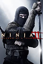 Ninja: Shadow of a Tear (2013) Hindi Dubbed thumbnail