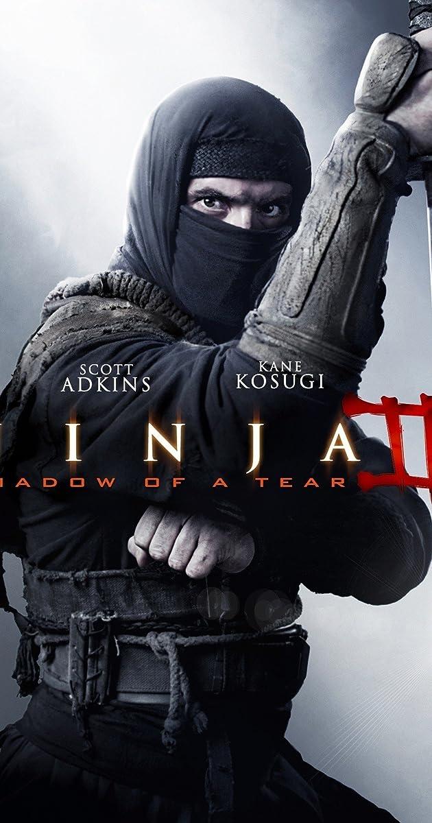Subtitle of Ninja: Shadow of a Tear