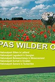 Movie to watch for free Das Wolgadelta in Russland [720x400]