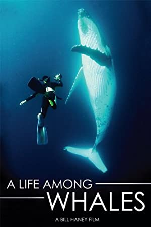 Where to stream A Life Among Whales