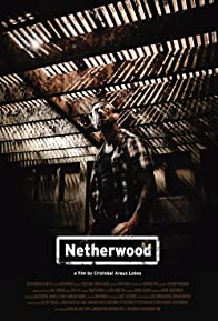 Primary photo for Netherwood