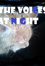 Stimmen in der Nacht