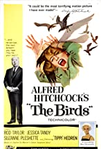 Primary image for The Birds