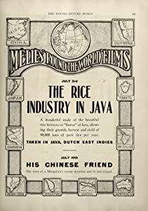 The Rice Industry in Java