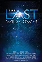 The Last Wildflower