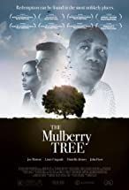 Primary image for The Mulberry Tree