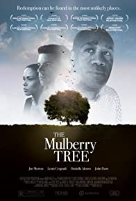 Primary photo for The Mulberry Tree