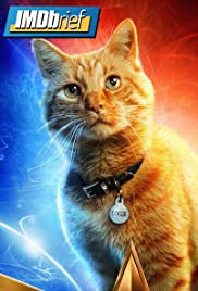 Meet Goose: Captain Marvel's Kitty Poster