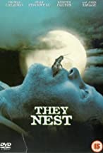 Primary image for They Nest