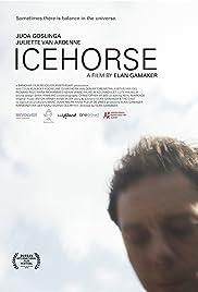 IJspaard Poster