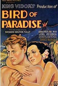 Bird of Paradise (1932) Poster - Movie Forum, Cast, Reviews