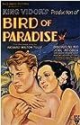 Bird of Paradise (1932) Poster