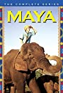 Maya (1967) Poster