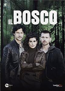 Movie trailers download ipad Il bosco by Roger Boyer [1920x1080]