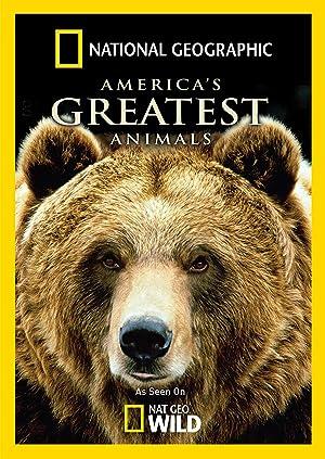 Americas Greatest Animals