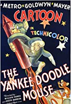 The Yankee Doodle Mouse
