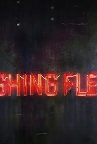 Primary photo for Flushing Flesh
