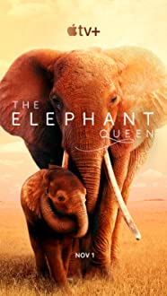 The Elephant Queen (2018)