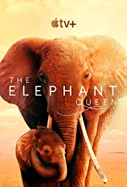 The Elephant Queen streaming vf