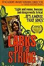 Larks on a String