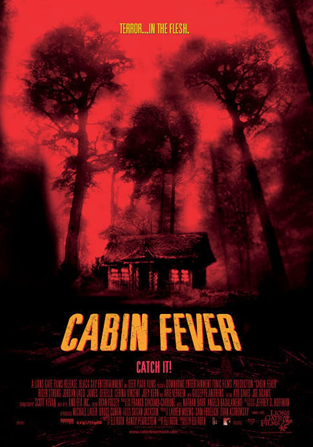 Cabin Fever 2003 Hindi ORG Dual Audio 480p BluRay ESub 340MB Download