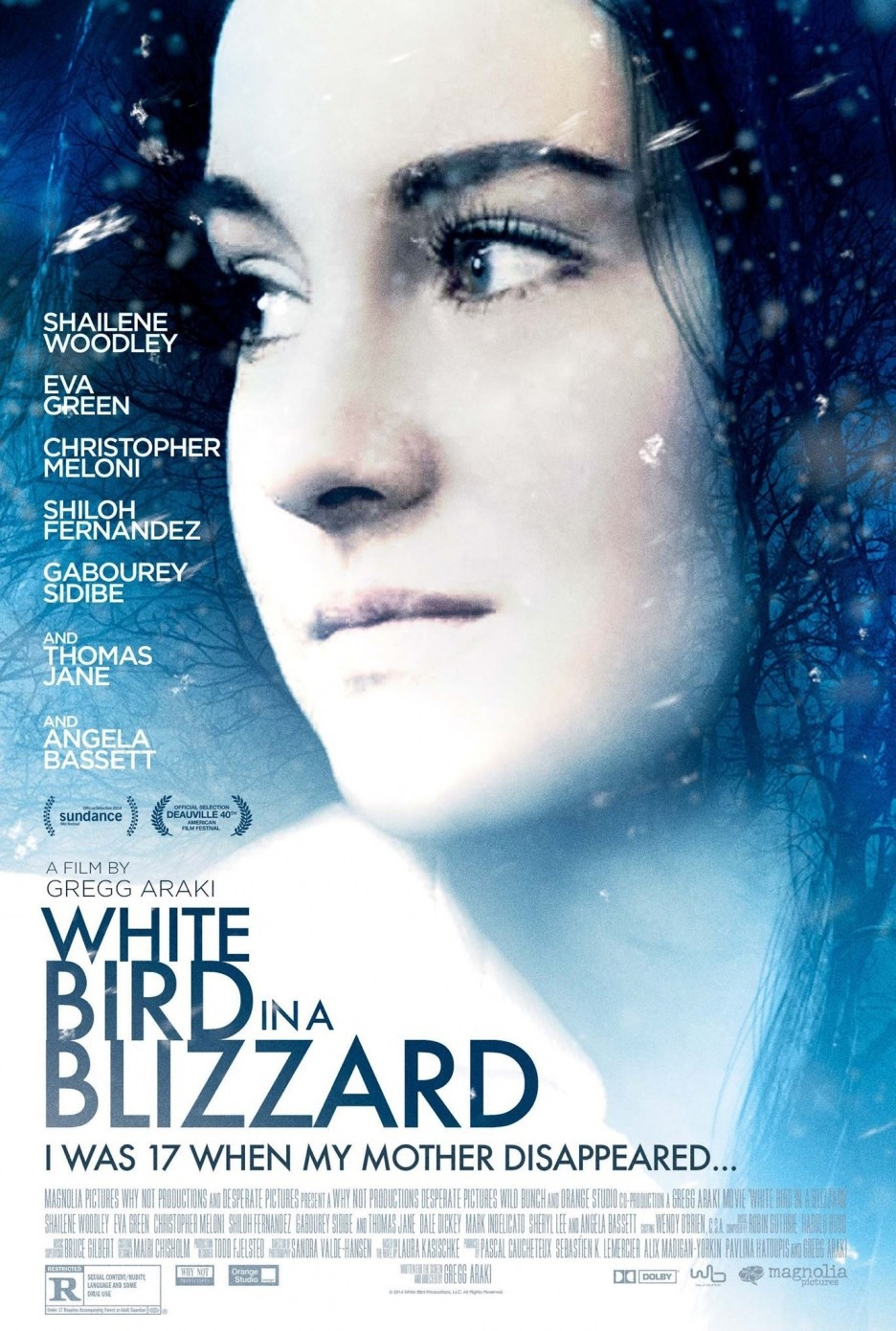 White Bird in a Blizzard (2014) - IMDb