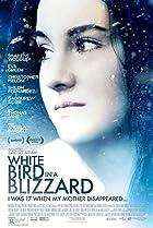 White Bird in a Blizzard (2014) Poster