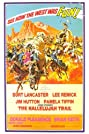 The Hallelujah Trail (1965) Poster