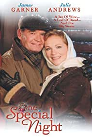 One Special Night (1999) Poster - Movie Forum, Cast, Reviews