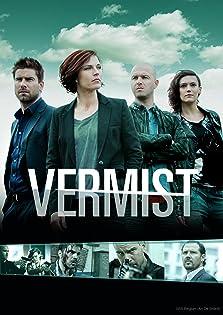Vermist (2008– )
