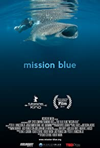 Primary photo for Mission Blue