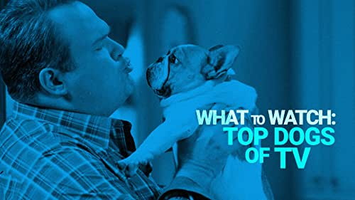 The Top Dogs on TV to Stream Right Now