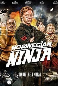 Primary photo for Norwegian Ninja