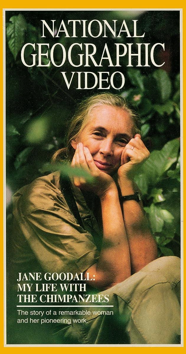Jane Goodall My Life With The Chimpanzees Tv Movie 1995 Imdb