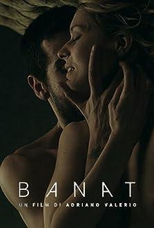 Banat - Il viaggio (2015)