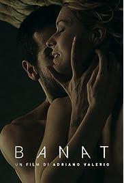 Banat: The Journey