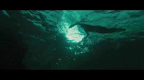 The Shallows (2016) - IMDb