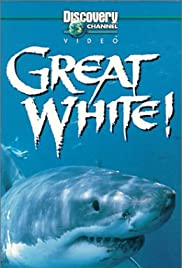 Full movie mp4 free download Great White [720pixels]