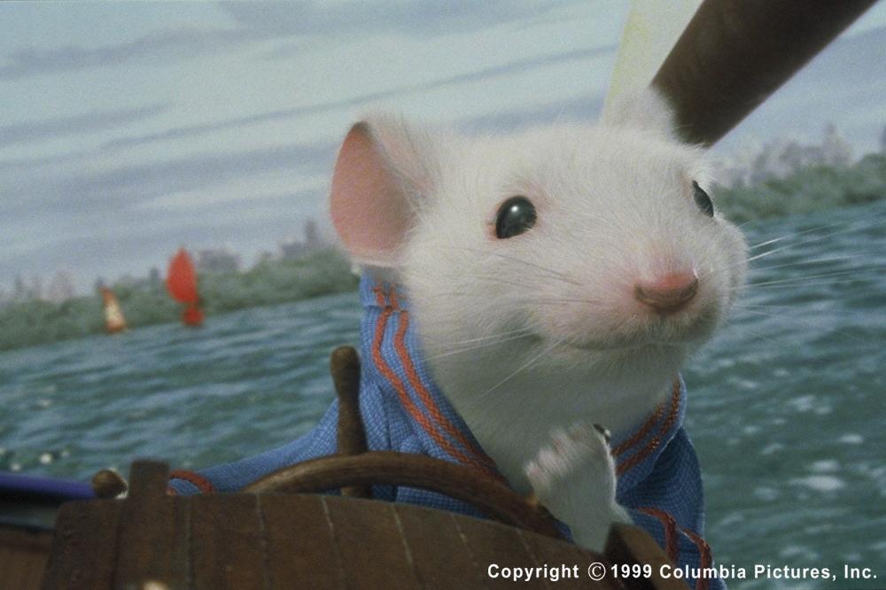 Stuart goes sailing