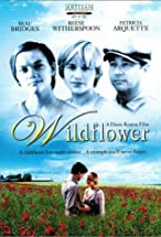 Primary image for Wildflower